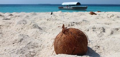 coconut-dining